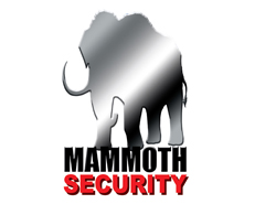 Mammoth Security Products