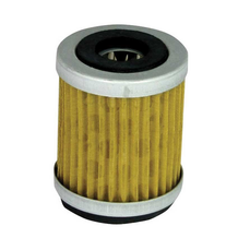 Filtrex Oil Filter - OIF019