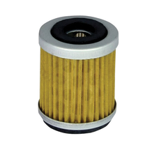 Filtrex Oil Filter - OIF021